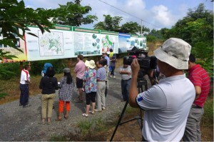 Field visit to Xishuangbanna Tropical Crops Research Institute's rubber demonstration area. Local TV crew present.