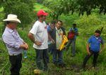 Reaping the Benefits of the Quesungual + Forages Project