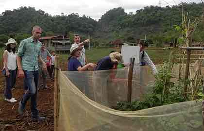 Humidtropics researchers visit a home garden trial in Thong village.