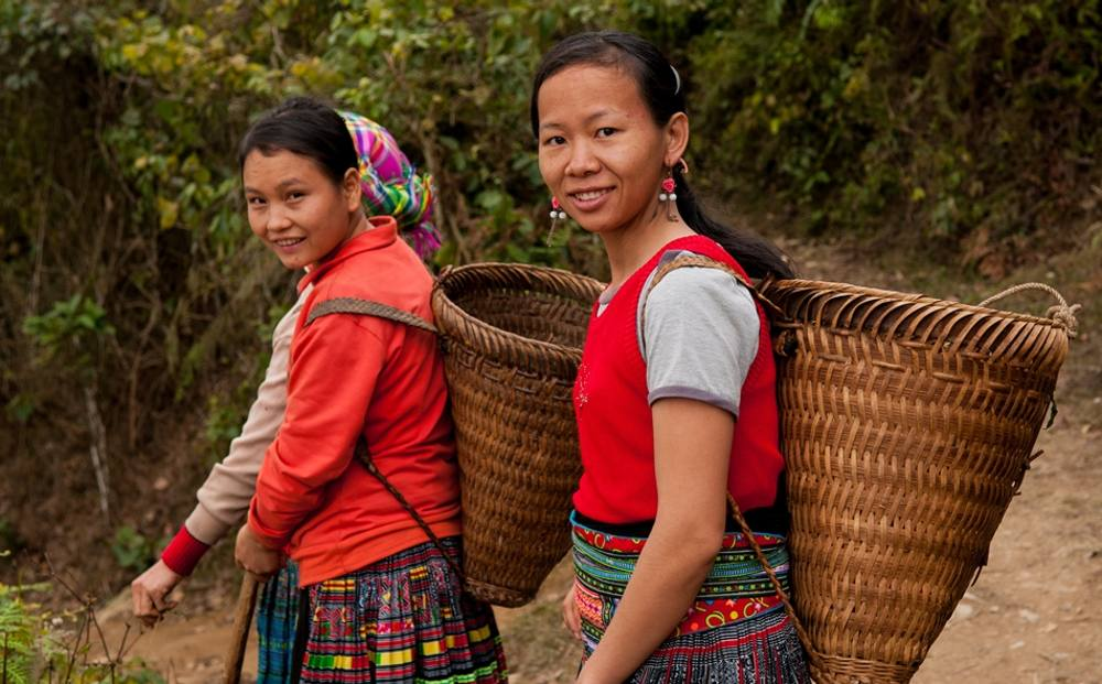 Rural women play a key role in farming activities: young girls from Suoi Giang Commune in northern Vietnam, home to four ethnic groups of Hmong, Kinh, Dao, and Tay.