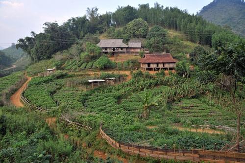 Typical smallholder farm in northwest Vietnam.