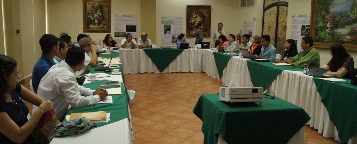 Meeting of Nicaragua's National R4D Platform members representing 37 organizations.
